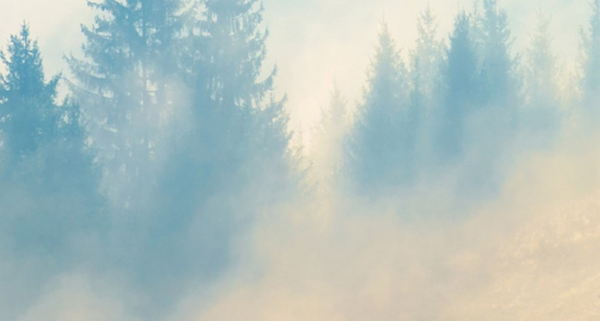 Prečítajte si náš biely dokument o vlhkosti